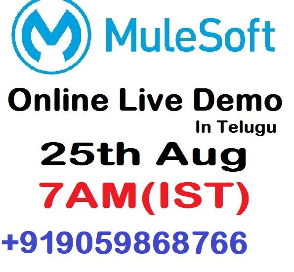 MuleSOft 25th aug demo